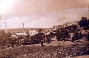 Handelsträdgård och Nolls stuga